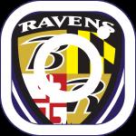 Ravens Instagram Logo