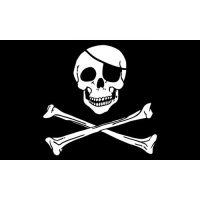 Skull Bones Pirate Flag