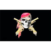 Skull with Guns Pirate Flag