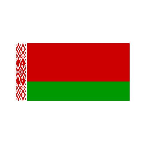 [OUT OF STOCK] Belarus 3x5 Flag