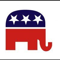 Republican Party3x5 Flag