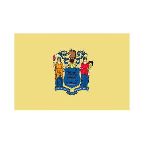 New Jersey State 3x5 flag